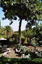 voyages-inattendus,  espagne andalousie grenade alhambra jardins 3