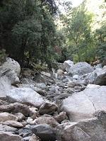 voyages-inattendus,  gorges d`heric, pierres et branchages