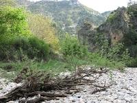 voyages-inattendus,  gorges du tarn, pierres et branches de bois